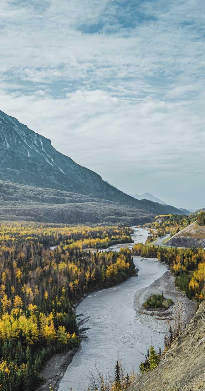 Beautiful landscape – yellow tree , mountains & river