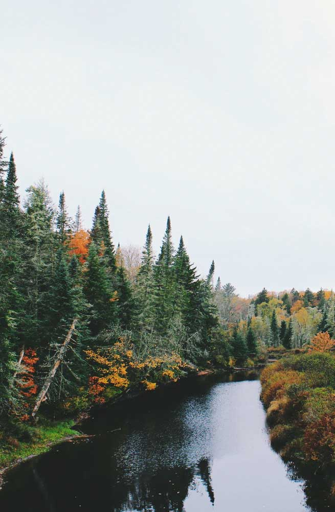 Beautiful autumn landscape image