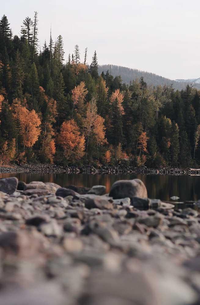 Autumn aesthetic – beautiful landscape