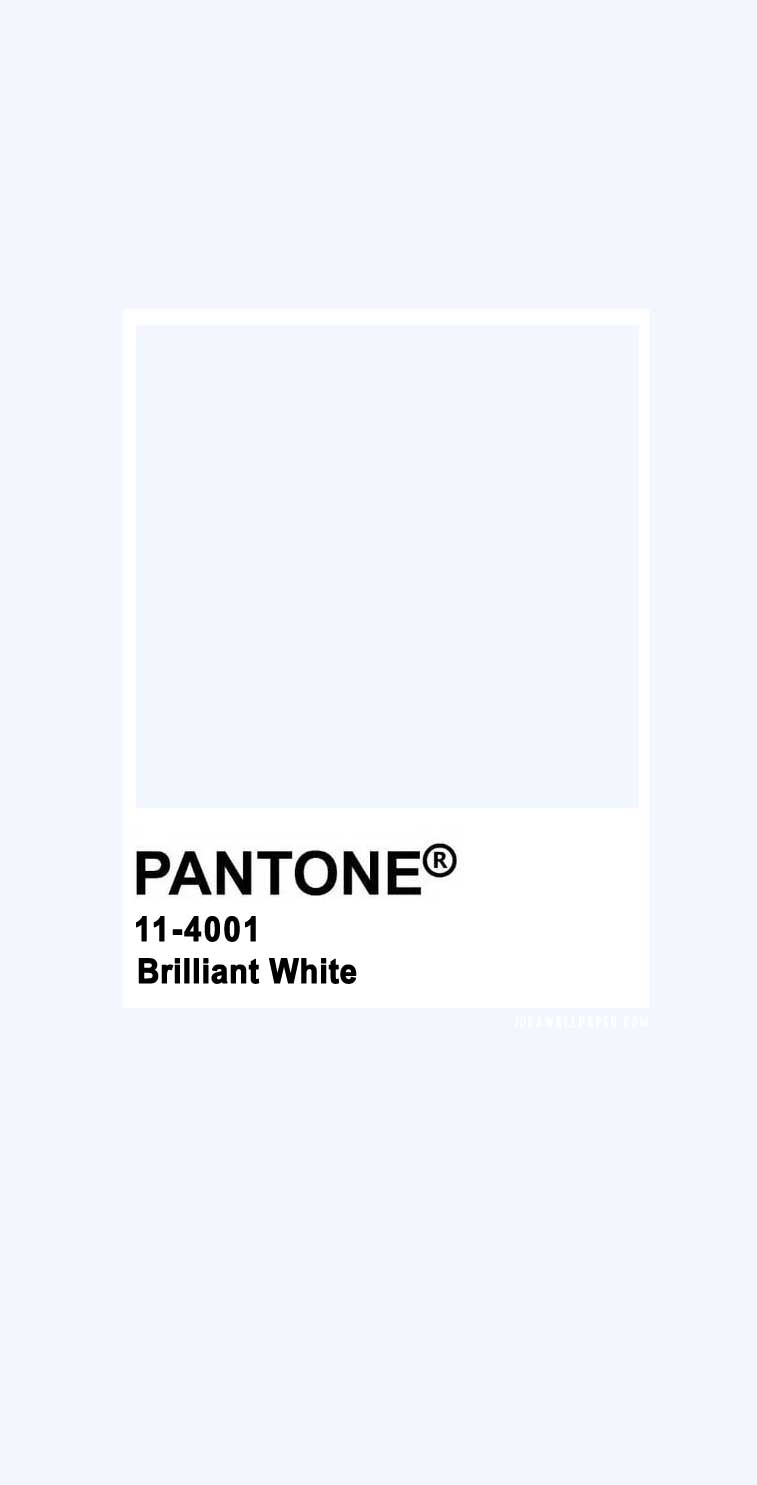 Pantone 2020 Spring/Summer : Brilliant White 11-4001