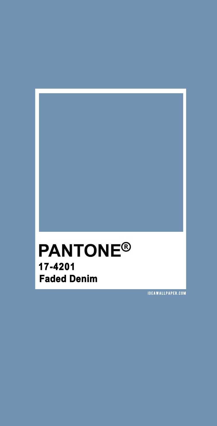 Pantone 2020 Spring/Summer : Faded Denim 17-4201