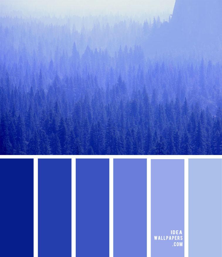Cobalt blue color palette