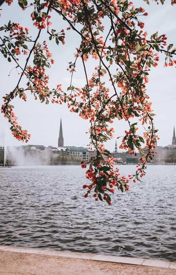 Spring in Hamburg