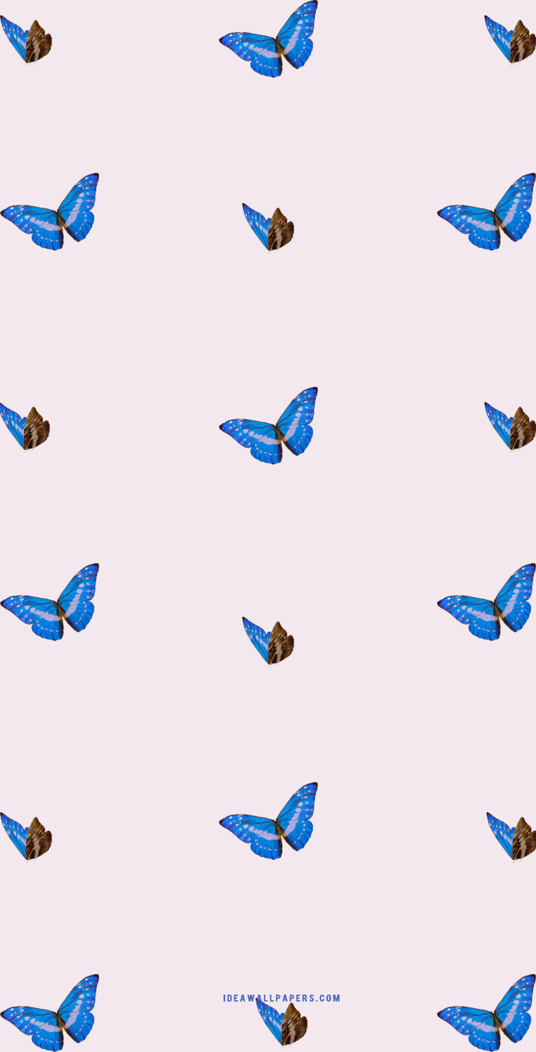 Butterfly iphone background