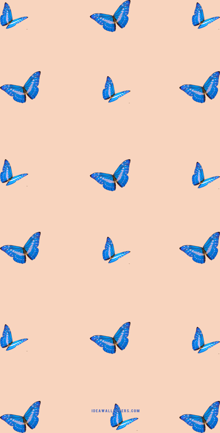 Butterfly on light peach background