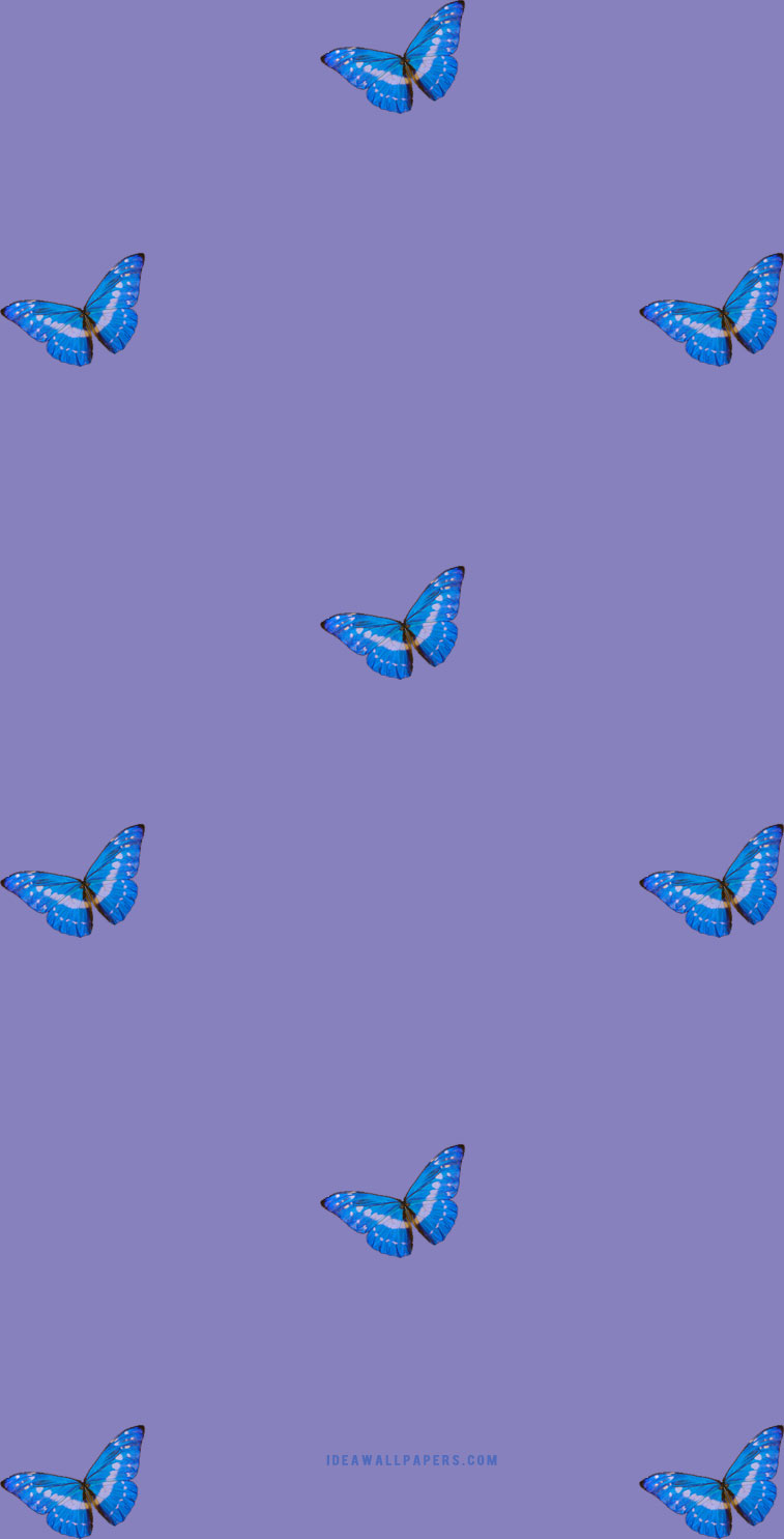 Blue butterflies on purple background for phones