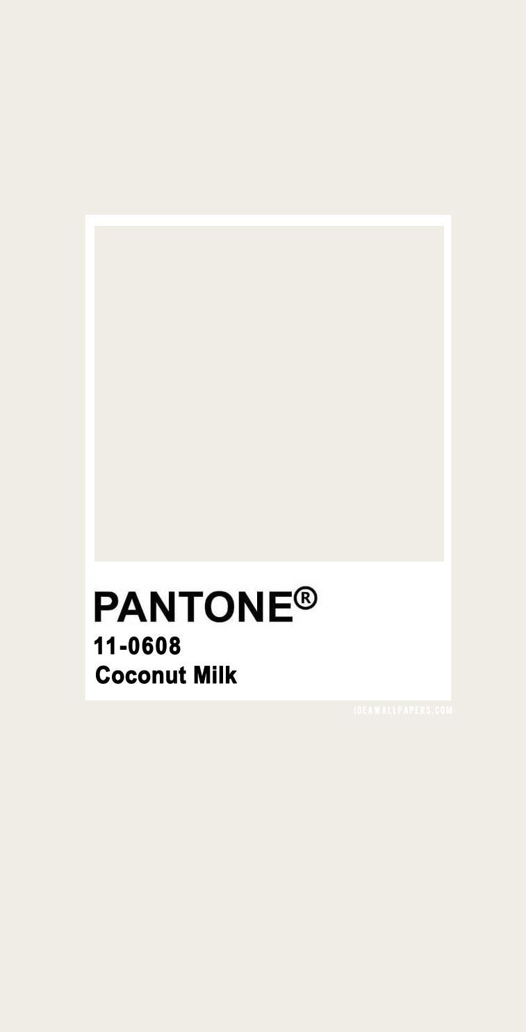 Pantone Coconut Milk : Pantone 11-0608 TCX Coconut Milk