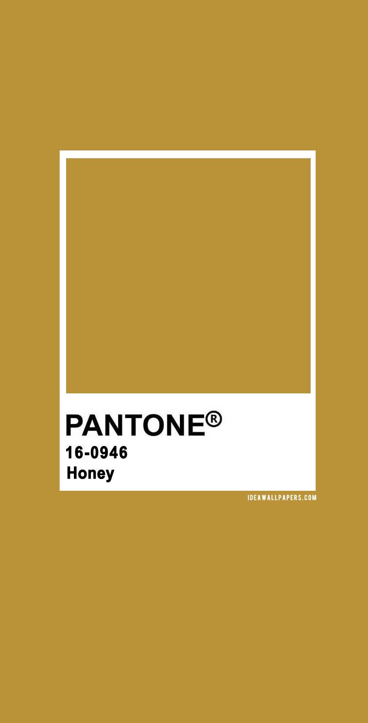 Pantone Honey  : Pantone 16-0946 TCX Honey