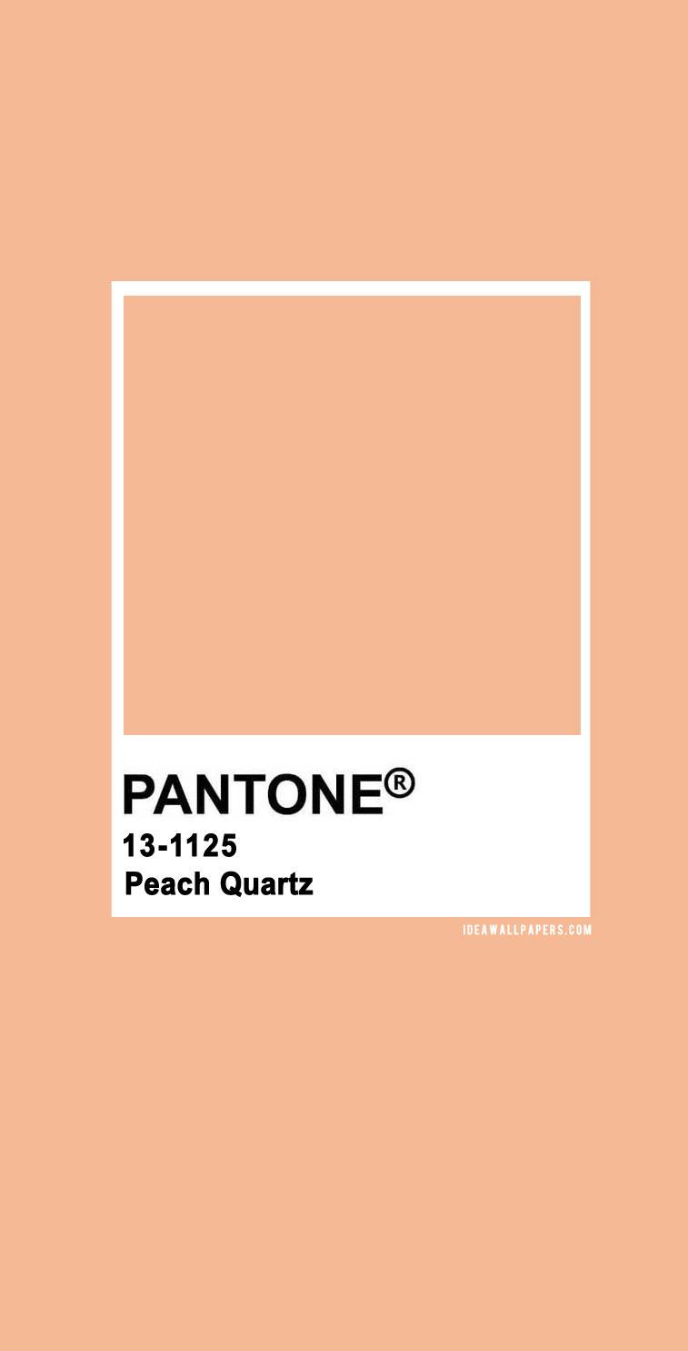 Pantone Peach Quartz  : Pantone 13-1125 TCX Peach Quartz