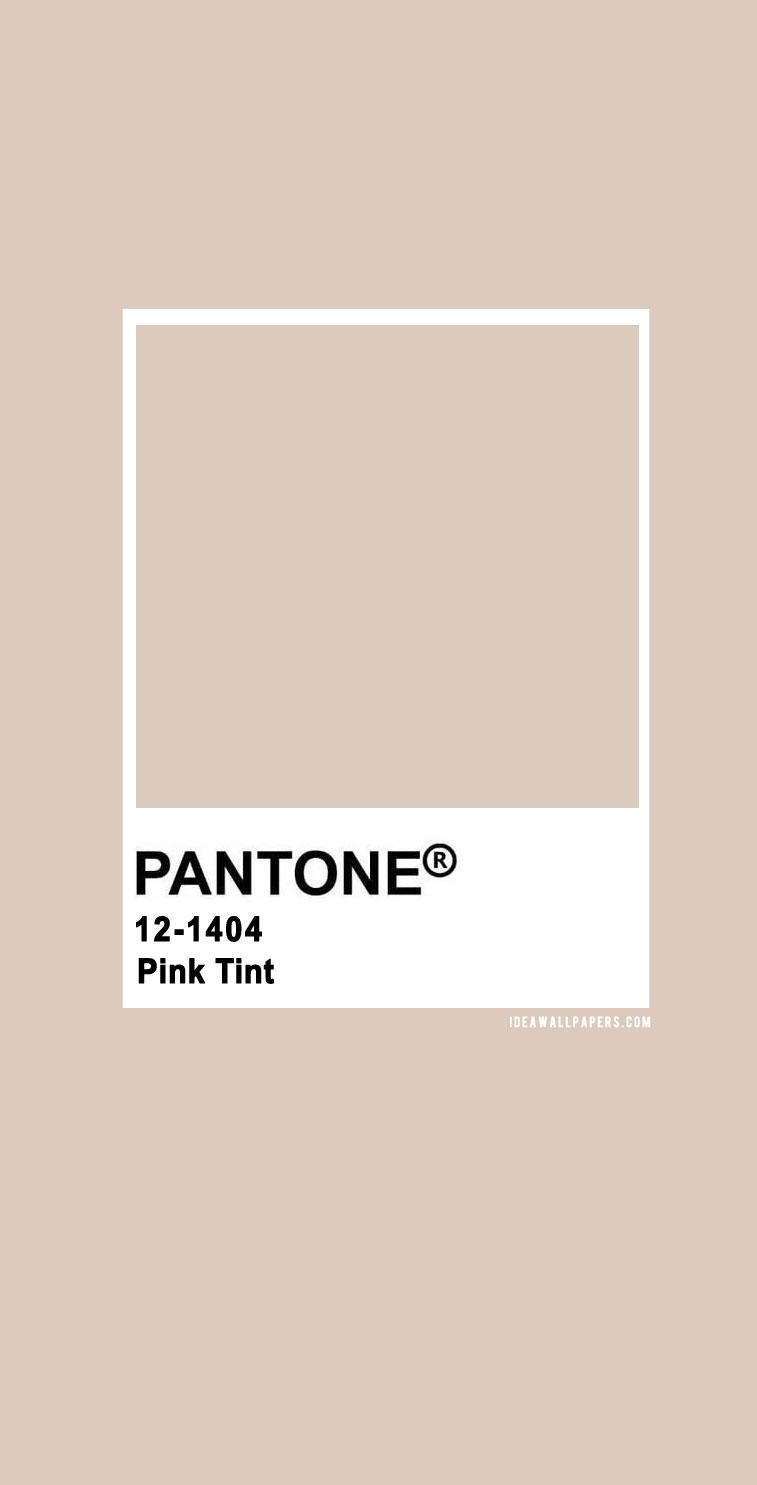 Pantone Pink Tint : Pantone 12-1404 TCX Pink Tint