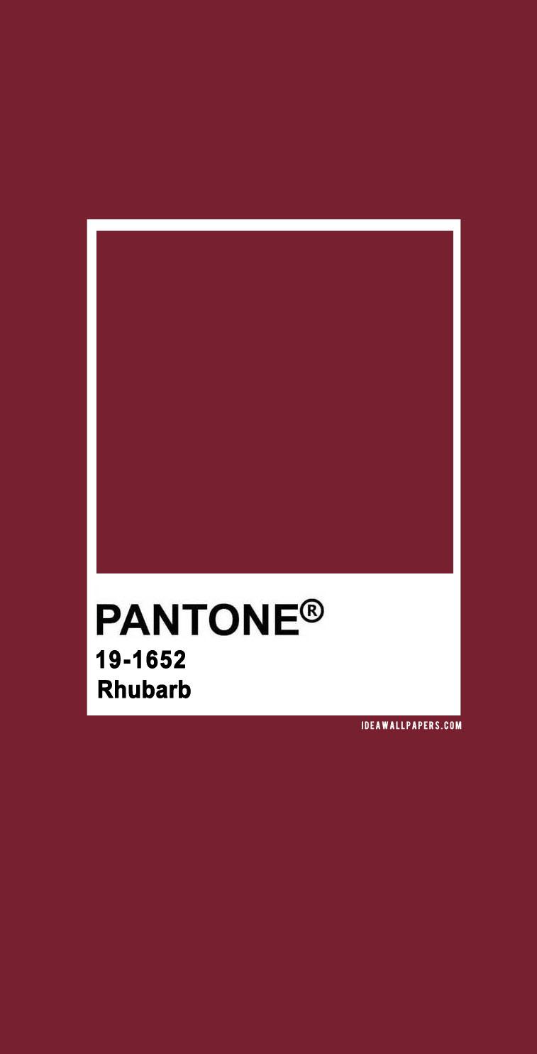 Pantone Rhubarb  : Pantone 19-1652 Rhubarb
