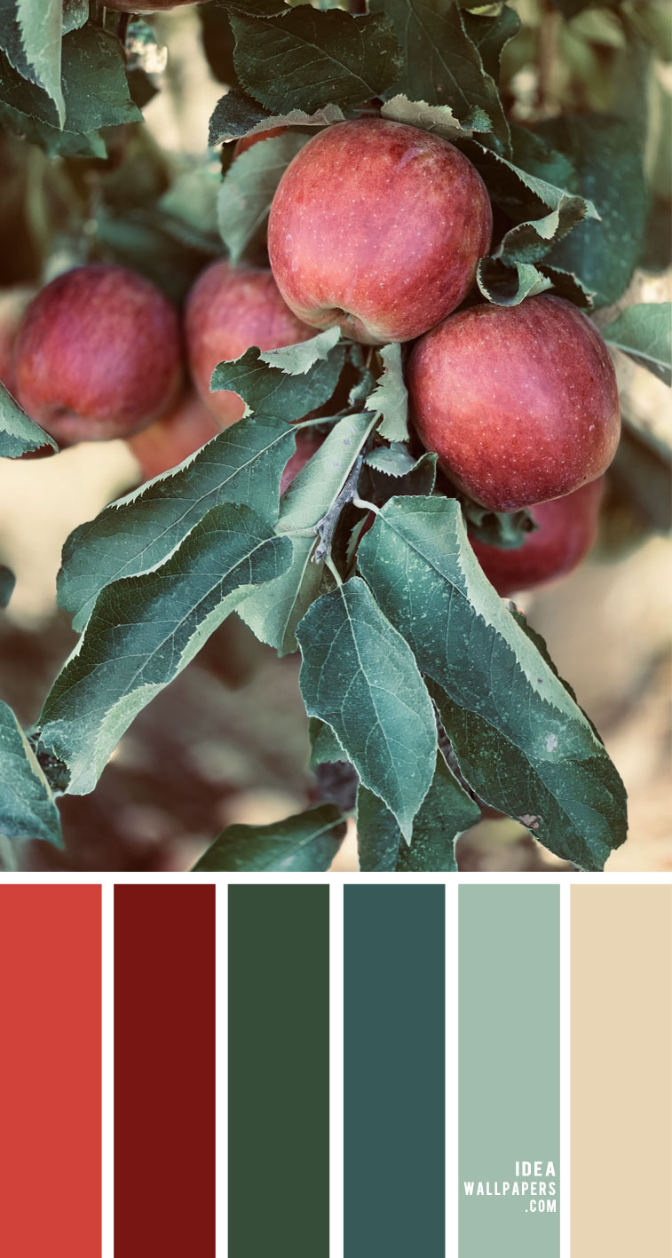 Color Palette 144 { Green , mint and Red color scheme }