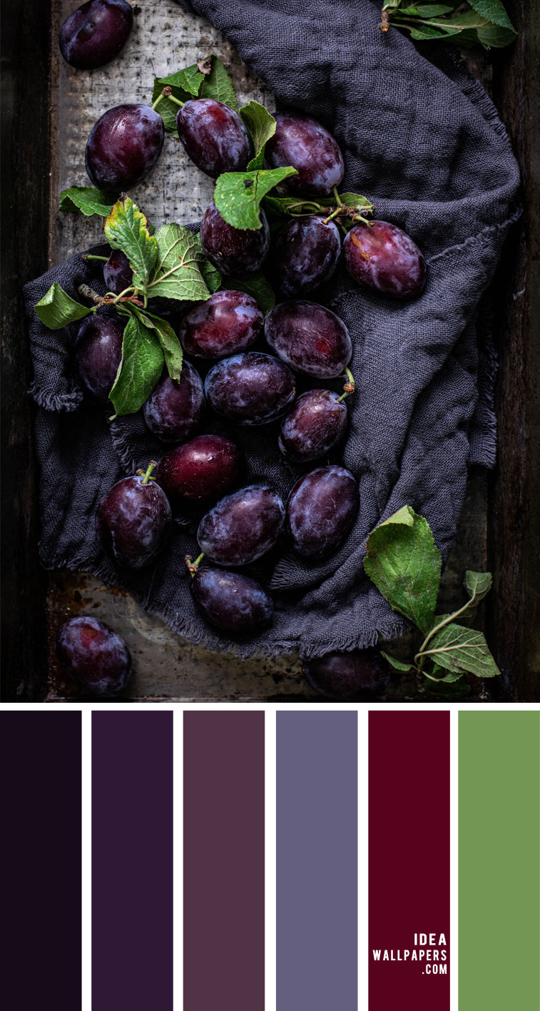Color Palette 145  { Plum Color Combos }