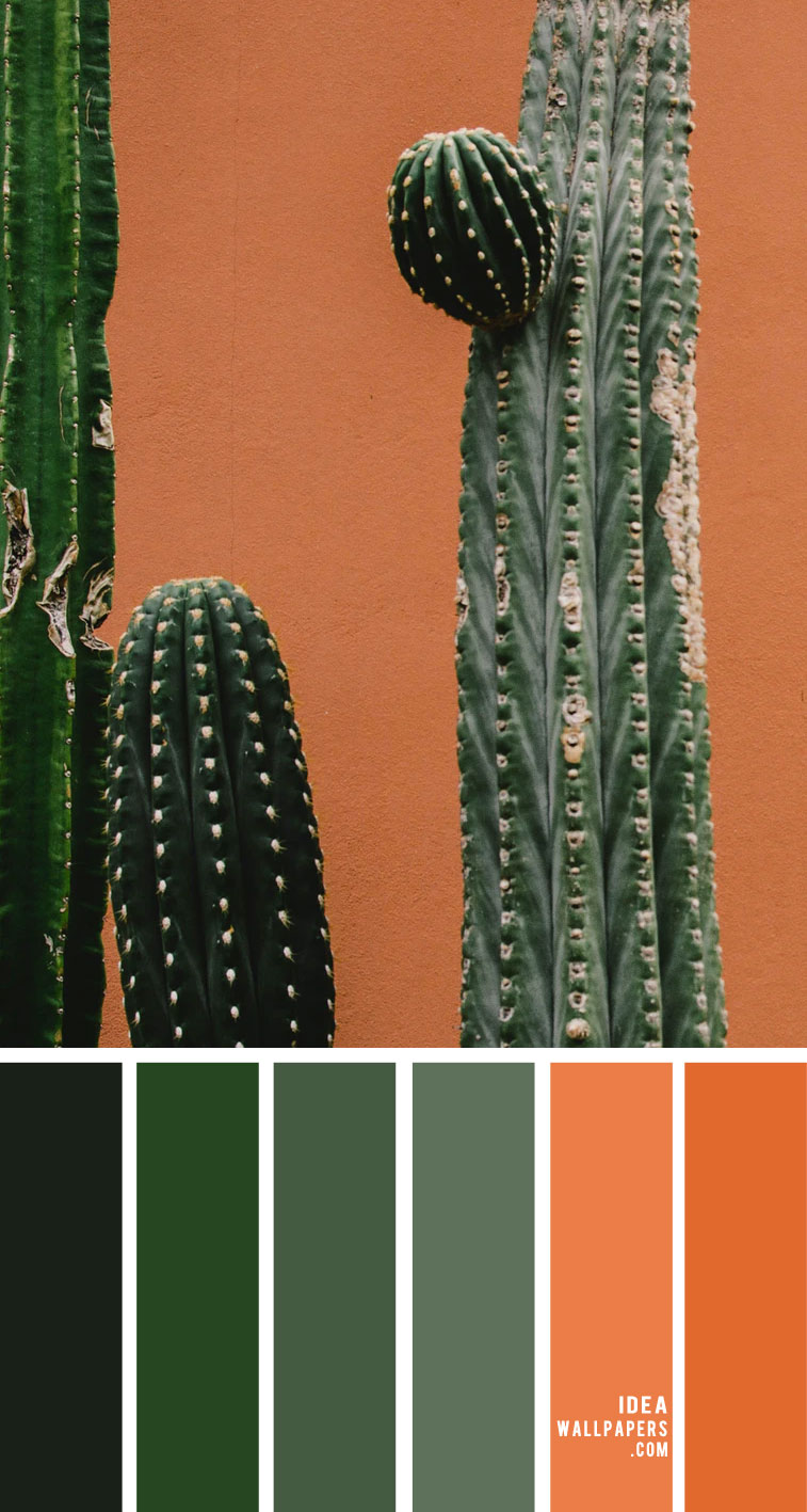 Green and Terracotta Color Scheme – Color Palette 155