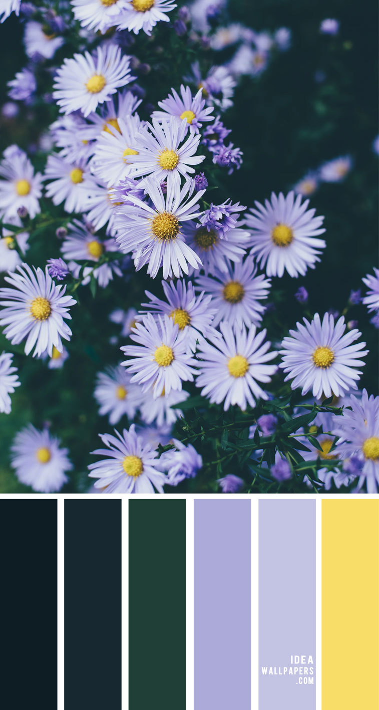 Lavender and yellow color  scheme – Color Palette 159