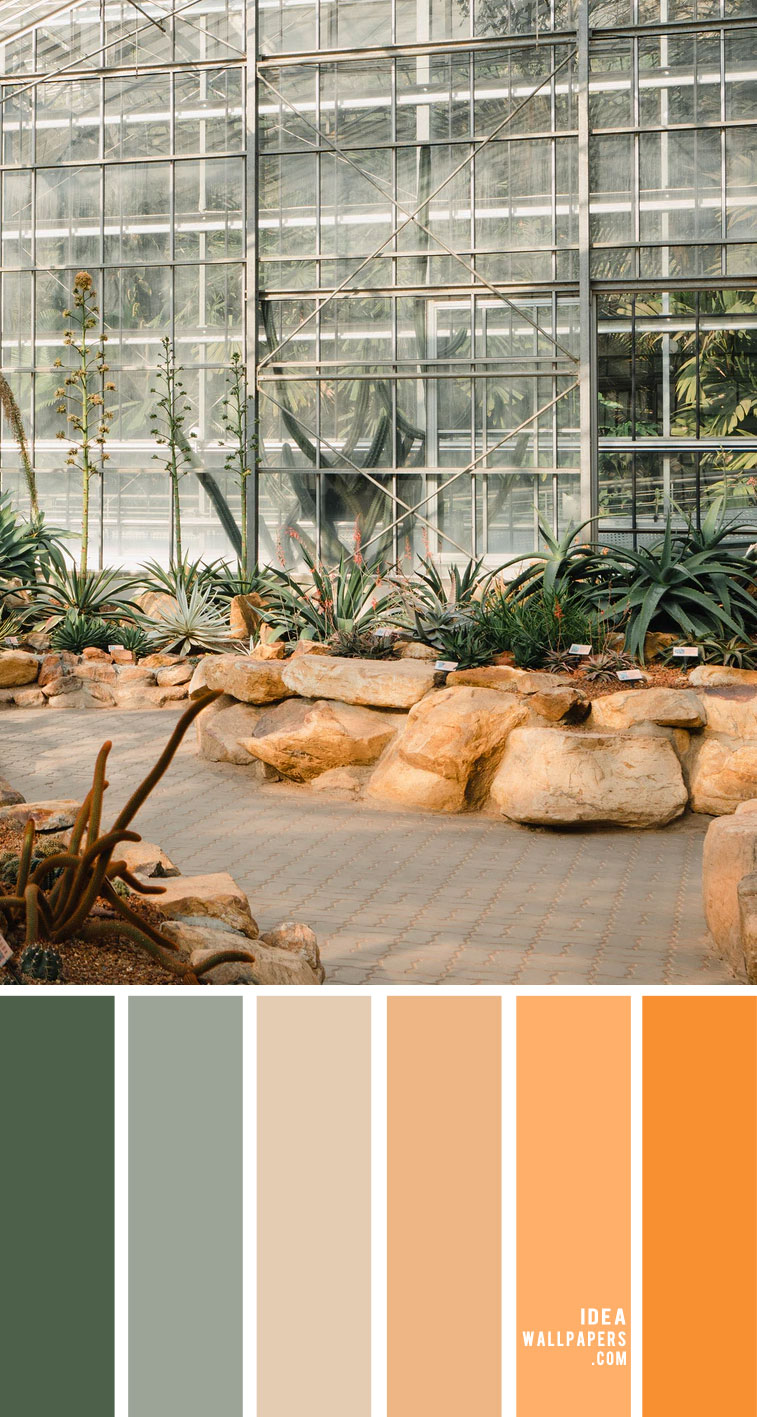 Peach and sage color palette – Color Palette 152